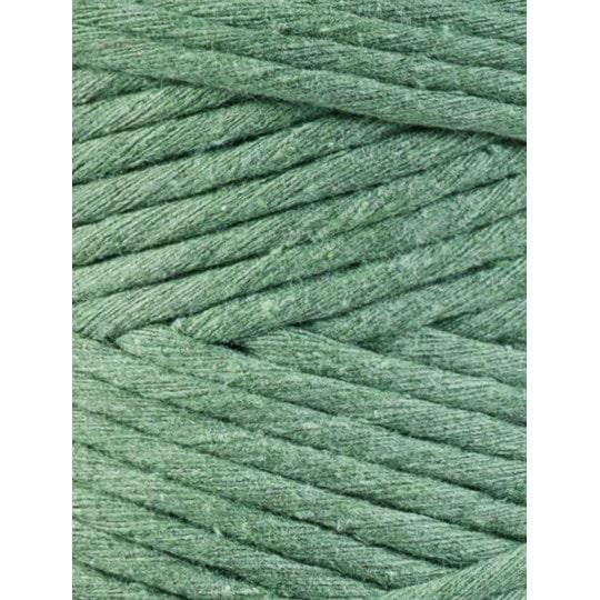 eucalyptus green 1 1