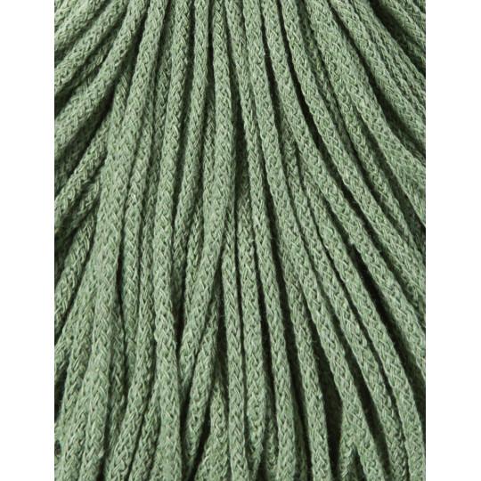 eucalyptus green 1 2