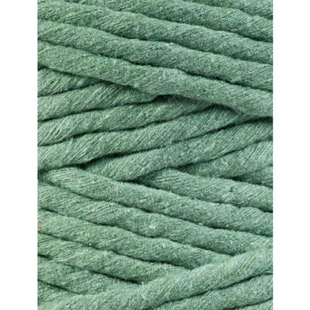 eucalyptus green 1